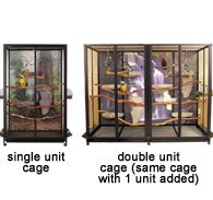 Expandable Cages