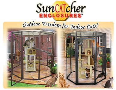 Small Animal Outdoor Cat Cages and Enclosures