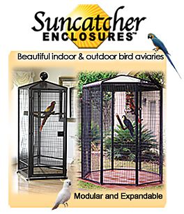 Bird Outdoor Cages and Enclosures