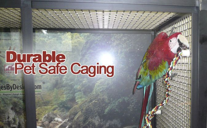 Durable Pet Safe Caging for Birds