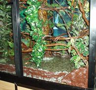 Durable Reptile Safe Caging Materials