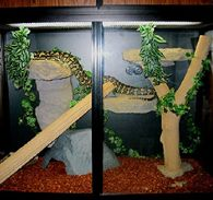 Durable Safe Reptile Cage Materials
