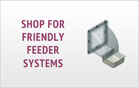 Friendly Feeders for Birds