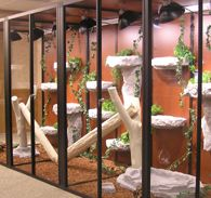 glass reptile cage panels
