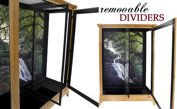 Removable Reptile Cage Dividers