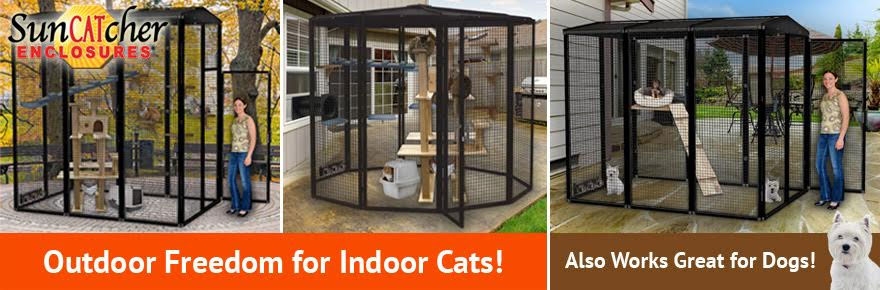 outdoor cat cages and outdoor cat enclosures